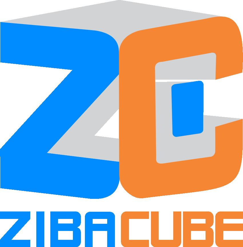Digital Marketing Agency & Web Development Company - ZibaCube