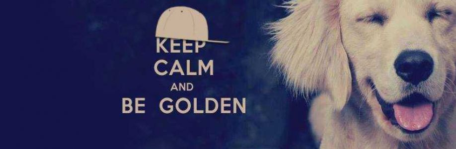 Golden Retriever Official